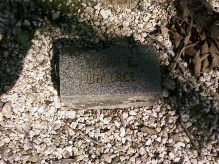 WALLACE, SARAH E. - Saline County, Arkansas | SARAH E. WALLACE - Arkansas Gravestone Photos