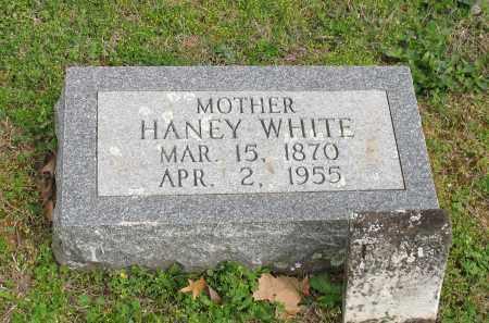 CLEMONS WHITE, LOU HANEY - Saline County, Arkansas   LOU HANEY CLEMONS WHITE - Arkansas Gravestone Photos