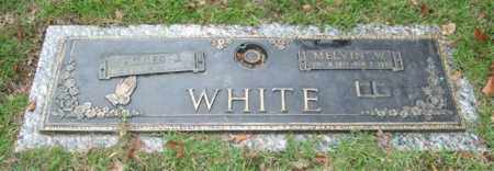 WHITE, MELVIN W. - Saline County, Arkansas | MELVIN W. WHITE - Arkansas Gravestone Photos