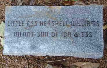 WILLIAMS, ESS HERSHELL - Saline County, Arkansas | ESS HERSHELL WILLIAMS - Arkansas Gravestone Photos