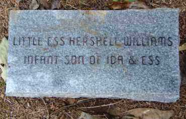 WILLIAMS, ESS HERSHELL - Saline County, Arkansas | ESS HERSHELL WILLIAMS - Arkansas Gravestone Photos
