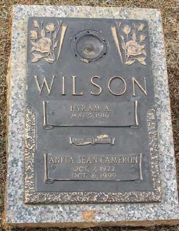 WILSON, ANITA JEAN - Saline County, Arkansas | ANITA JEAN WILSON - Arkansas Gravestone Photos