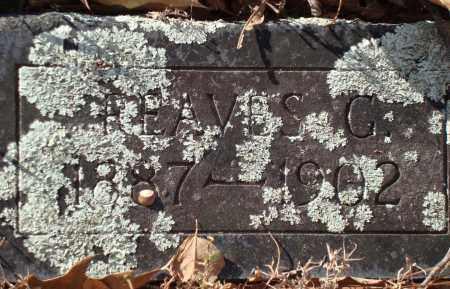 WRIGHT, REAVES C - Saline County, Arkansas | REAVES C WRIGHT - Arkansas Gravestone Photos