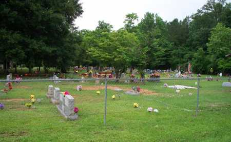 * CHANT, *OVERVIEW - Scott County, Arkansas | *OVERVIEW * CHANT - Arkansas Gravestone Photos
