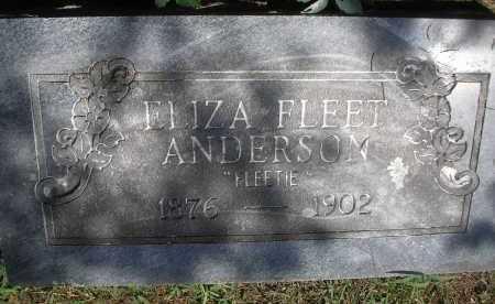 FLEET ANDERSON, ELIZA - Scott County, Arkansas | ELIZA FLEET ANDERSON - Arkansas Gravestone Photos