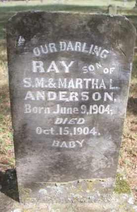 ANDERSON, RAY - Scott County, Arkansas | RAY ANDERSON - Arkansas Gravestone Photos