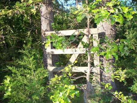 * BELL GATE,  - Scott County, Arkansas |  * BELL GATE - Arkansas Gravestone Photos