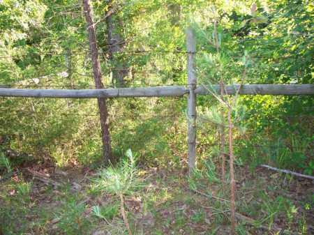 * BELL OVERVIEW,  - Scott County, Arkansas    * BELL OVERVIEW - Arkansas Gravestone Photos