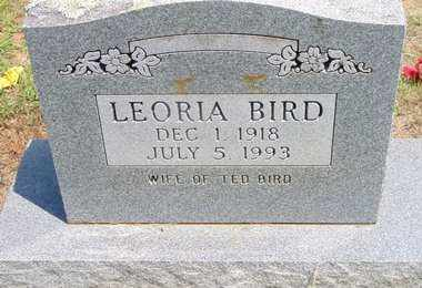 BIRD, LEORIA - Scott County, Arkansas | LEORIA BIRD - Arkansas Gravestone Photos