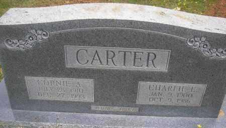 CARTER, CHARLIE E - Scott County, Arkansas | CHARLIE E CARTER - Arkansas Gravestone Photos