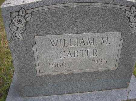 CARTER, WILLIAM M - Scott County, Arkansas | WILLIAM M CARTER - Arkansas Gravestone Photos