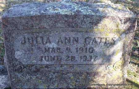 CATES, JULIA ANN - Scott County, Arkansas   JULIA ANN CATES - Arkansas Gravestone Photos