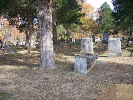 *CEDAR GROVE OVERVIEW,  - Scott County, Arkansas |  *CEDAR GROVE OVERVIEW - Arkansas Gravestone Photos