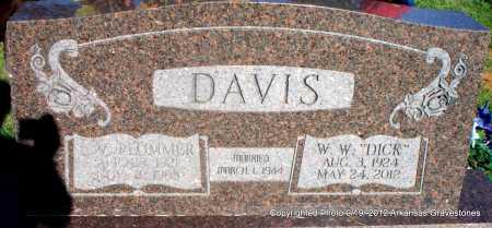 PLUMMER DAVIS, L V - Scott County, Arkansas   L V PLUMMER DAVIS - Arkansas Gravestone Photos