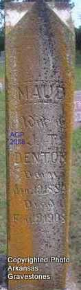 DENTON, MAUD - Scott County, Arkansas | MAUD DENTON - Arkansas Gravestone Photos
