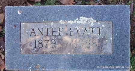 BATES EVATT, ANTEE - Scott County, Arkansas | ANTEE BATES EVATT - Arkansas Gravestone Photos