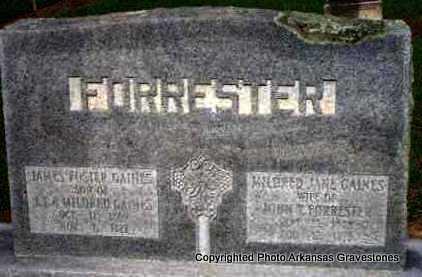 FORRESTER, MILDRED JANE GAINES - Scott County, Arkansas | MILDRED JANE GAINES FORRESTER - Arkansas Gravestone Photos