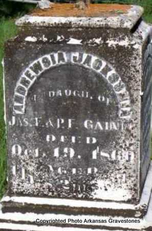 GAINES, ANDREWSIA JACKSONIA - Scott County, Arkansas | ANDREWSIA JACKSONIA GAINES - Arkansas Gravestone Photos