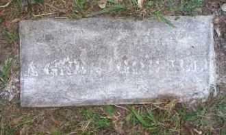 GOSNELL, AGNES - Scott County, Arkansas | AGNES GOSNELL - Arkansas Gravestone Photos