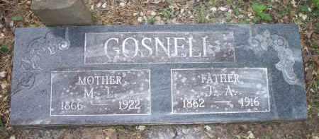 GOSNELL, M  L - Scott County, Arkansas   M  L GOSNELL - Arkansas Gravestone Photos