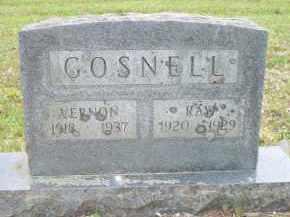 GOSNELL, RAY - Scott County, Arkansas | RAY GOSNELL - Arkansas Gravestone Photos