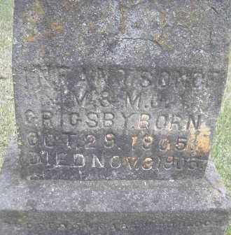 GRIGSBY, INFANT SON - Scott County, Arkansas   INFANT SON GRIGSBY - Arkansas Gravestone Photos