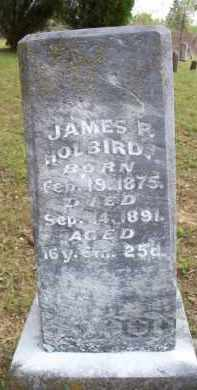 HOLBIRD, JAMES P - Scott County, Arkansas   JAMES P HOLBIRD - Arkansas Gravestone Photos
