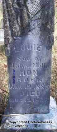 HON, LOUIE - Scott County, Arkansas | LOUIE HON - Arkansas Gravestone Photos