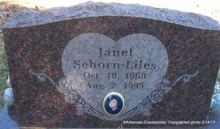 SEHORN LILES, JANET L - Scott County, Arkansas   JANET L SEHORN LILES - Arkansas Gravestone Photos