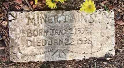 MINER, TWINS - Scott County, Arkansas | TWINS MINER - Arkansas Gravestone Photos