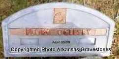 OGLESBY, FLORA - Scott County, Arkansas | FLORA OGLESBY - Arkansas Gravestone Photos