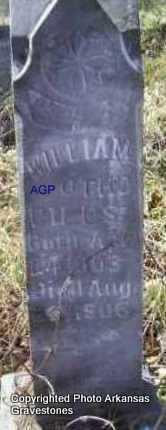 PILES, WILLIAM OTHO - Scott County, Arkansas | WILLIAM OTHO PILES - Arkansas Gravestone Photos
