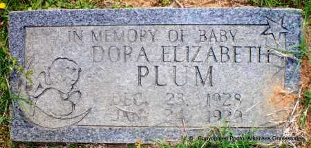 PLUM, DORA ELIZABETH - Scott County, Arkansas | DORA ELIZABETH PLUM - Arkansas Gravestone Photos