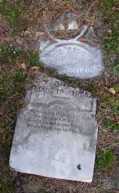RODGERS, MOLLIE - Scott County, Arkansas | MOLLIE RODGERS - Arkansas Gravestone Photos