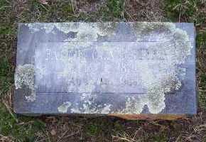 ROGERS, FANNIE OLA - Scott County, Arkansas | FANNIE OLA ROGERS - Arkansas Gravestone Photos