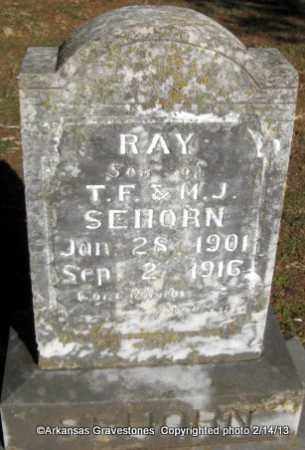 SEHORN, RAY - Scott County, Arkansas | RAY SEHORN - Arkansas Gravestone Photos