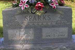 SPARKS, ARVIL - Scott County, Arkansas | ARVIL SPARKS - Arkansas Gravestone Photos