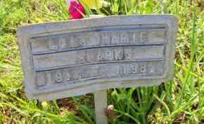SPARKS, LOIS MARIE - Scott County, Arkansas | LOIS MARIE SPARKS - Arkansas Gravestone Photos