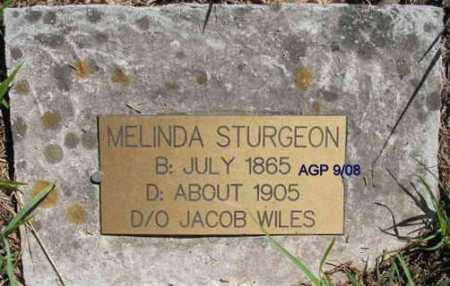WILES STURGEON, MELINDA - Scott County, Arkansas   MELINDA WILES STURGEON - Arkansas Gravestone Photos