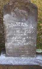 TAFF, THOMAS A - Scott County, Arkansas | THOMAS A TAFF - Arkansas Gravestone Photos