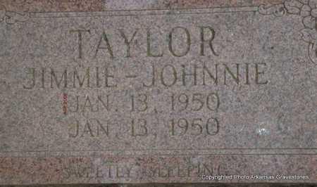TAYLOR, JOHNNIE - Scott County, Arkansas | JOHNNIE TAYLOR - Arkansas Gravestone Photos