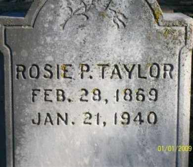 TAYLOR, ROSIE P - Scott County, Arkansas | ROSIE P TAYLOR - Arkansas Gravestone Photos