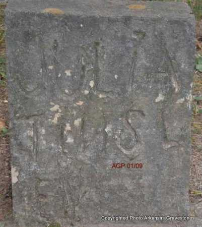 TINSLEY, JULIA - Scott County, Arkansas   JULIA TINSLEY - Arkansas Gravestone Photos