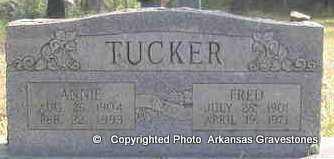 TUCKER, FRED - Scott County, Arkansas | FRED TUCKER - Arkansas Gravestone Photos