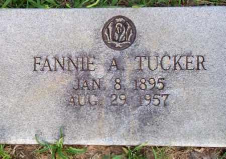 TUCKER, FANNIE A - Scott County, Arkansas | FANNIE A TUCKER - Arkansas Gravestone Photos