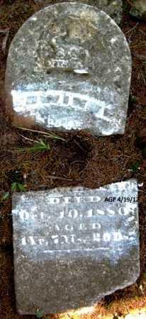 WEBB, EDWIN - Scott County, Arkansas   EDWIN WEBB - Arkansas Gravestone Photos