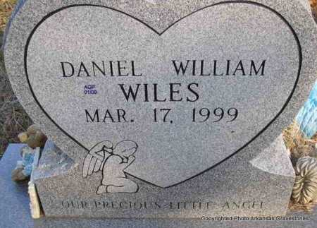 WILES, DANIEL WILLIAM - Scott County, Arkansas | DANIEL WILLIAM WILES - Arkansas Gravestone Photos