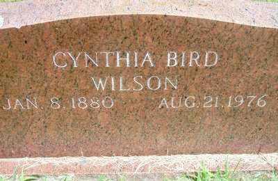 BIRD, CYNTHIA ANN, MRS - Scott County, Arkansas | CYNTHIA ANN, MRS BIRD - Arkansas Gravestone Photos