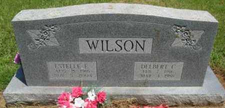WILSON, DELBERT C - Scott County, Arkansas   DELBERT C WILSON - Arkansas Gravestone Photos