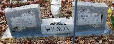 WILSON, EVELYN M - Scott County, Arkansas | EVELYN M WILSON - Arkansas Gravestone Photos